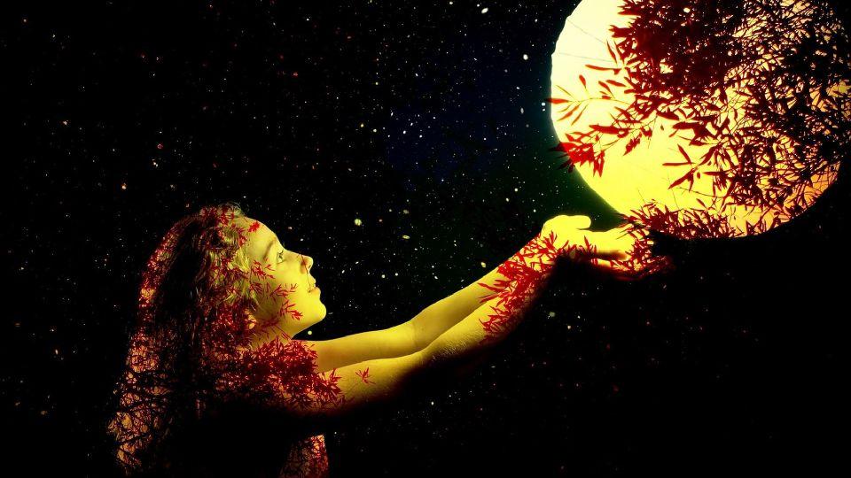 Луна. Девушка. Листва