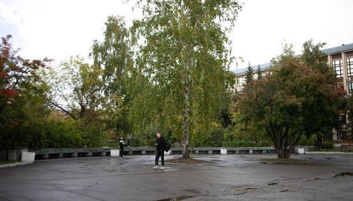 Алтайский вуз выиграл тендер по озеленению Барнаула за 2 млн рублей