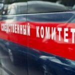 Пропавшего под Новосибирском шестилетнего мальчика нашли мертвым