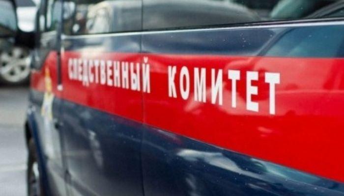 Следком возбудил уголовное дело из-за смерти 12-летней девочки в Рубцовске