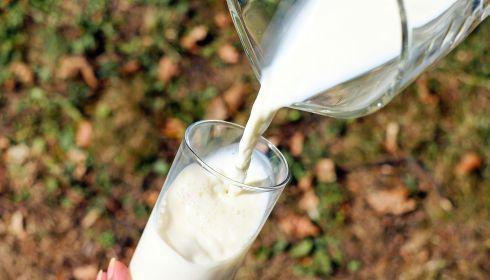 В российских магазинах ожидают резкий рост цен на молоко