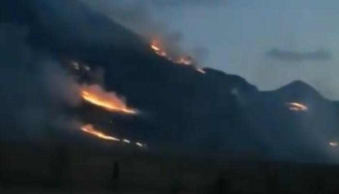 Лесные пожары полыхают в курортной зоне Республики Алтай