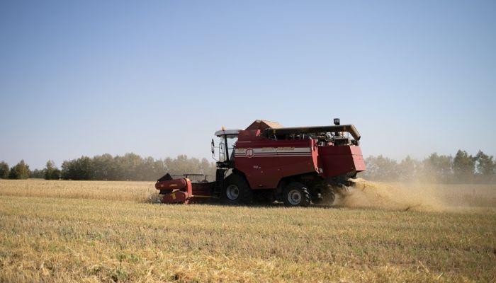 Алтайские аграрии сработали с рекордной прибылью в 2020 году