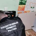 Житель Красноярска затащил ребёнка в квартиру и ранил ножом в шею