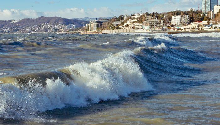 На Черноморье активно растёт спрос на отдых премиум-класса