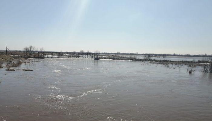 Река Алей подтапливает несколько сел в Алтайском крае