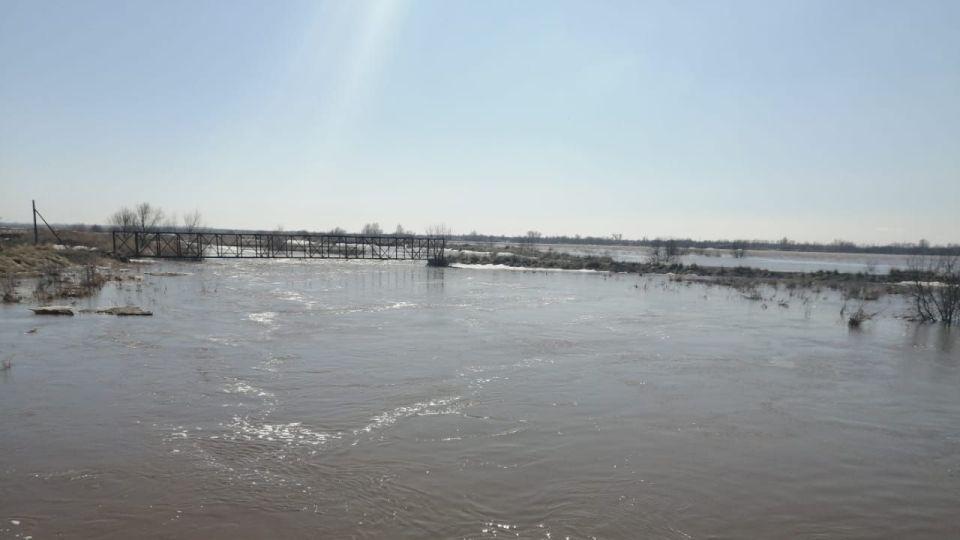 Паводок в Локтевском районе.
