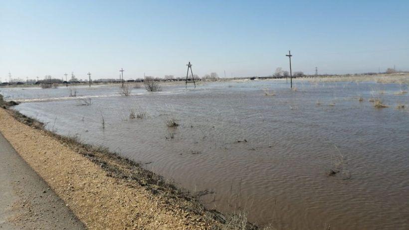 Паводок в Локтевском районе. Фото:Игорь Сивуха
