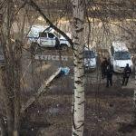 Дерево упало на мужчину во дворе дома в Барнауле
