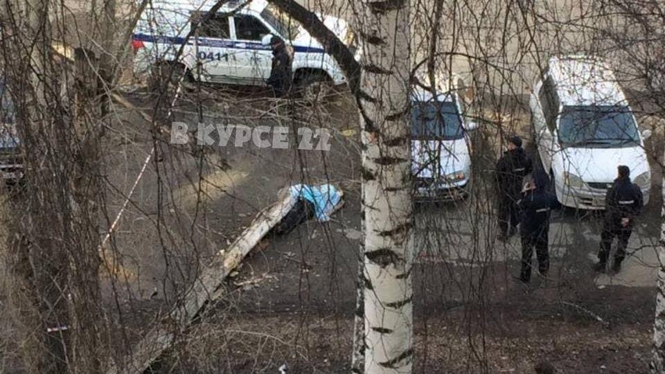 Дерево. ЧП. Барнаул