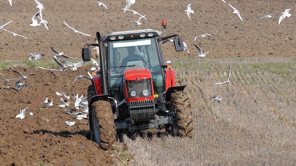 Фермеры Алтайского края готовятся к посевной