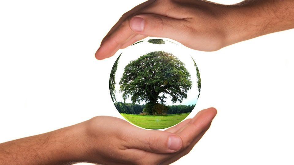 Экология. Природа. Земля