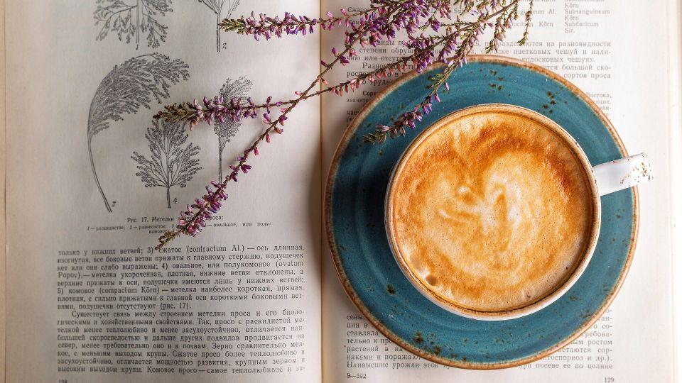Цветы. Книга. Кофе