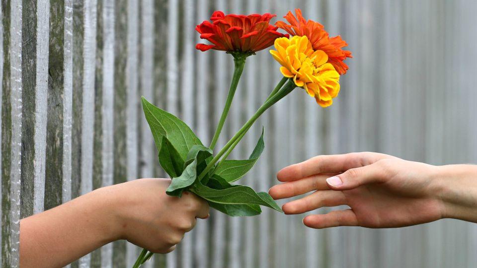 Цветы. Поздравление. Букет