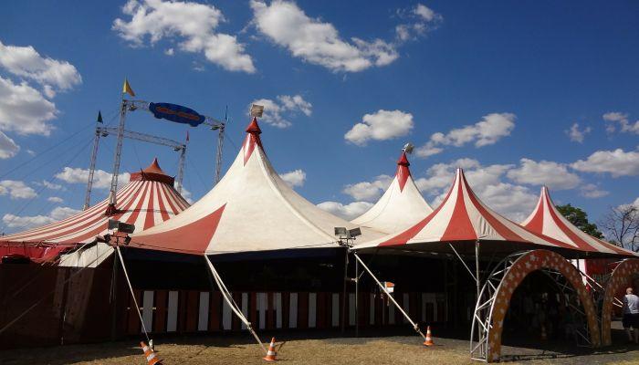 Как и зачем отмечают Всемирный день цирка и на какой день выпадает праздник
