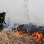 Горит мусор и трава: в Алтайском крае потушили почти 70 пожаров за сутки