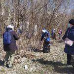 450 мешков мусора убрали у входа в барнаульский парк Юбилейный