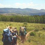 Алтайский край вошел в топ-9 направлений для летнего отдыха