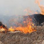 Штормовое предупреждение объявлено на Алтае из-за угрозы пожаров