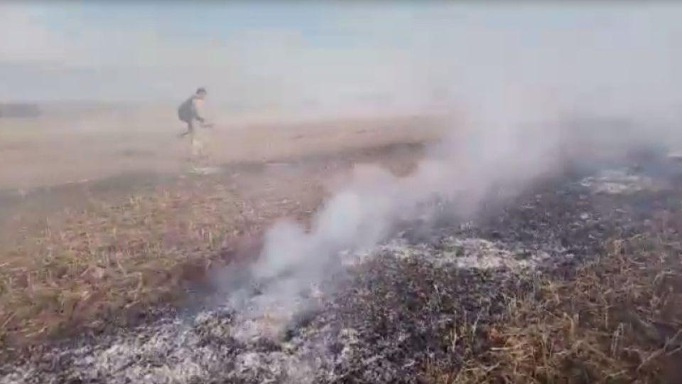 Трава. Пожар