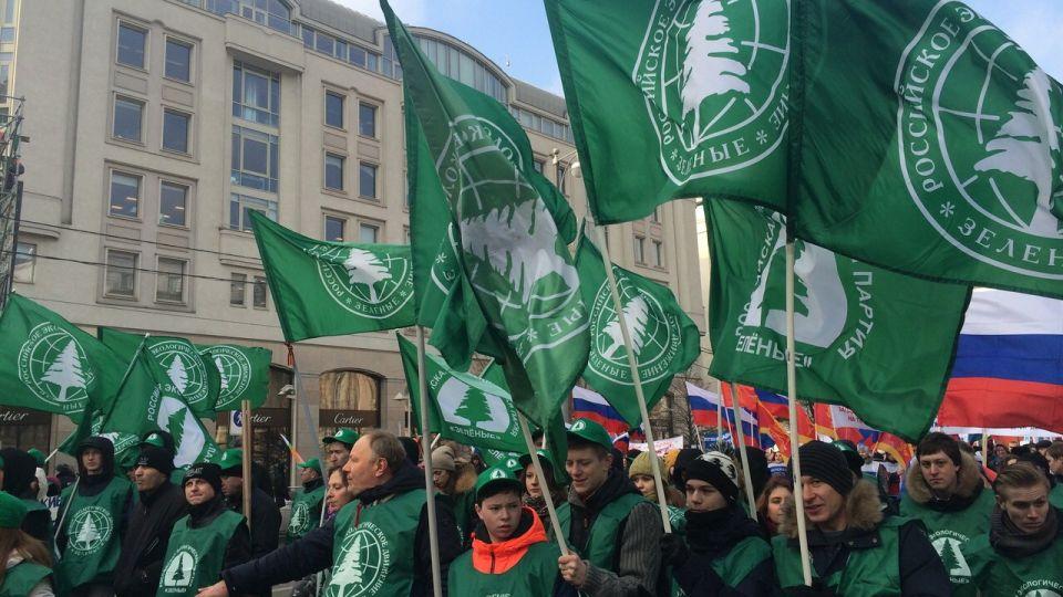 Зеленые. Партия