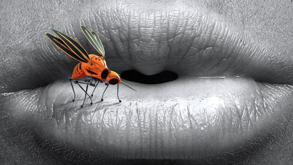 Укус комара. Губы