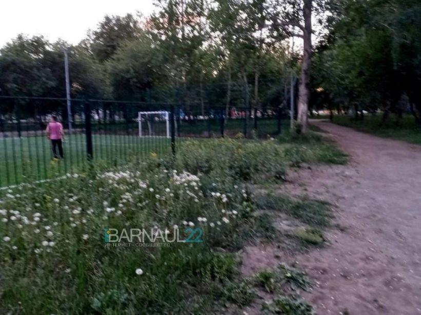 сквер Химиков Фото:Barnaul22