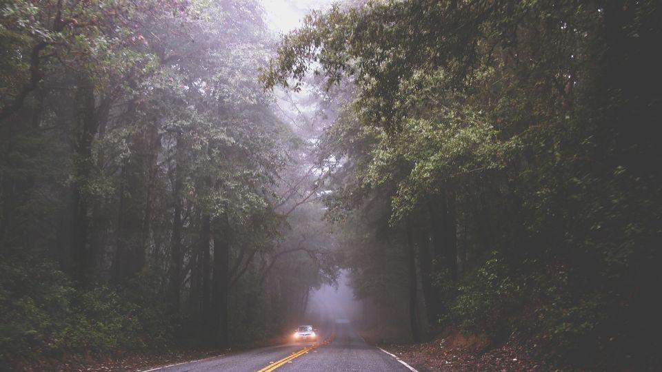 Дождь. Туман. Автомобиль